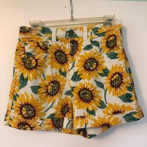 American Apparel Shorts - American Apparel Sunflower High Waisted Shorts